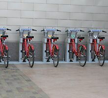 You Can Rent a Bicycle by Navigator