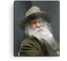 Walt Whitman, 1887 Metal Print