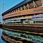 Millennium Stadium, Cardiff  by Paula J James