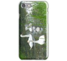 Langs de berm iPhone Case/Skin
