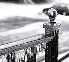 Frozen Railing by Filly