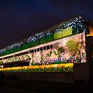 National Portrait Gallery  Canberra Enlighten  2014 by Kym Bradley