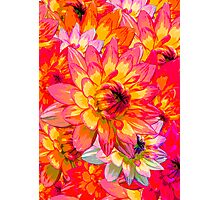 Vivid Flowers Photographic Print