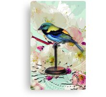 SEASONAL CHANGING PERCH WATCHER Canvas Print