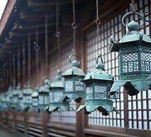Kasuga-taisha metal lanterns by photoeverywhere