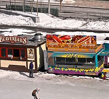 Food stalls on the Rideau Canal, Ottawa, ON. Canada by Shulie1