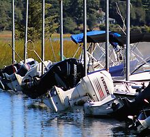 Motors Waiting, Boaters Wanted by Gilda Axelrod