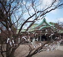 Omikuji fortunes by photoeverywhere