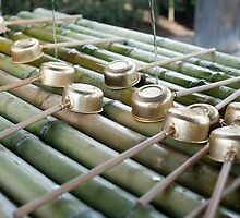 Todai-ji Washing Ladels by photoeverywhere