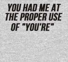 """You Had Me At The Proper Use of """"YOU'RE""""  by mralan"""