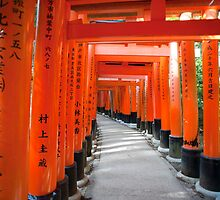 Torii gate Tunnel by photoeverywhere