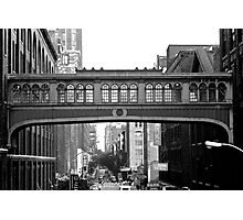 From The High Line Photographic Print