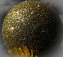 GOLD SPHERE by Sandra  Aguirre