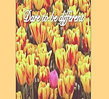 Tulips- Dare to be different by emla