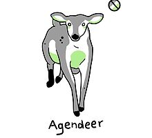 Agendeer by Merlin Grant
