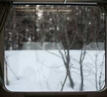 train window by photoeverywhere