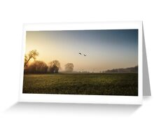Geese at Dawn Greeting Card