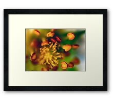 Flower 1 Framed Print