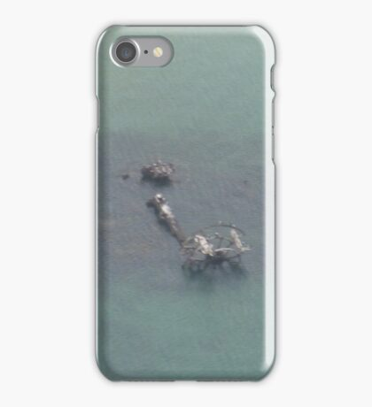 flying-monster collection 037 iPhone Case/Skin