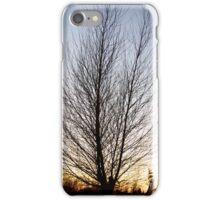 Winter Tree at Sunset iPhone Case/Skin