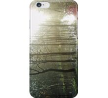 Winter Sun Through Trees and Water iPhone Case/Skin