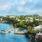 St. George's Harbour, Bermuda by Susan Savad
