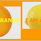 AN ORANGE A YELLOW by TIGGSTUDIO