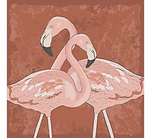 Artistic flamingos Photographic Print