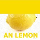 AN LEMON by TIGGSTUDIO