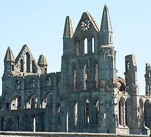 Ruins of Benedictine's Abbey by photoeverywhere