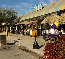 Tropical Restaurant in Florida by coralZ