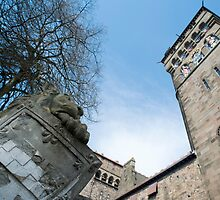 Cardiff Castle Animal Wall by photoeverywhere