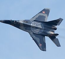 Polish Air Force Mig 29 by Mike Rivett