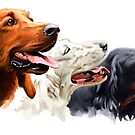 Three dogs by Johannes Wessmark