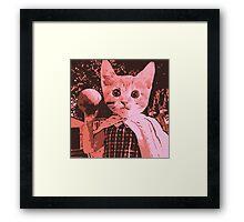 cat Play Ball Framed Print