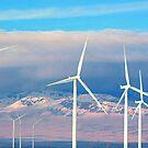 Windmills in Idaho by Jessie Miller/Lehto