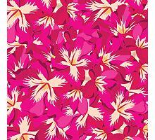 Beautiful flowers, nature pattern Photographic Print