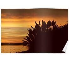 Sunset at lepe beach Poster