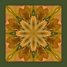 Eye of the Iris - Shawl by owlspook
