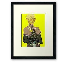 Aras Framed Print