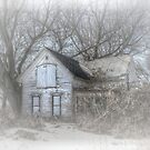 Winter's Ghost by wiscbackroadz