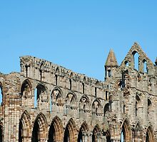 Whitby Abbey ruins detail by photoeverywhere