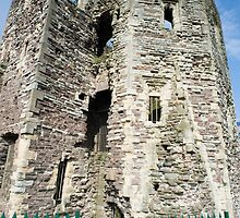 Newport Castle Ruins by photoeverywhere