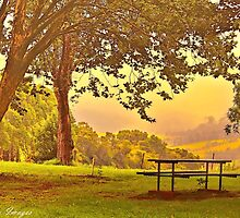 Table For One by wallarooimages