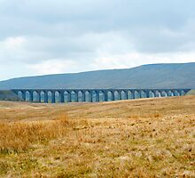 Landscape view of Ribblehead viaduct by photoeverywhere
