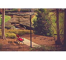 The Red Bench  Photographic Print