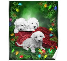 Puppies For Christmas Poster