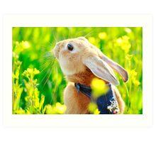 Happy Easter (^_^) Art Print