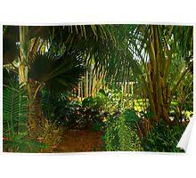 Tropical Corner Poster