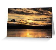 Lake Rotorua Greeting Card